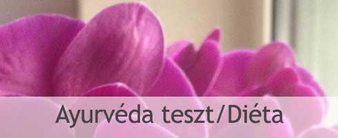 AYURVEDA-TESZT-DIETA