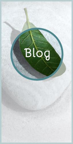 main-blog-hover
